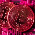 There's a 'decent probability' bitcoin goes to zero, says Vanguard economist